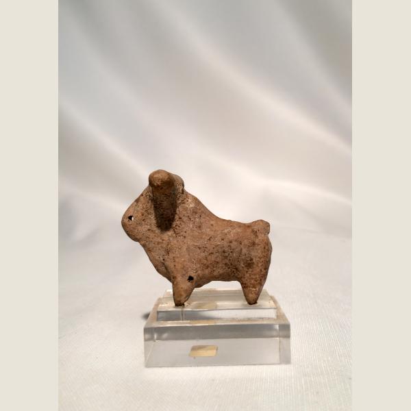 Ancient Persian Zebu