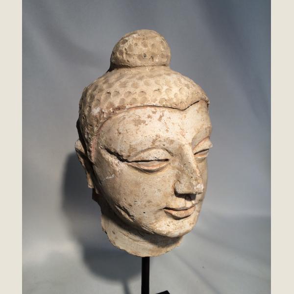 Ancient Gandharan Stucco Head of Buddha