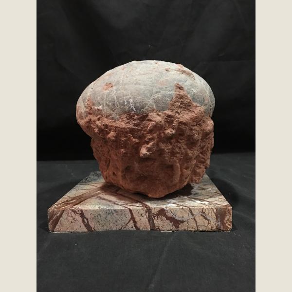 Pre-Historic Dinosaur Egg Fossil